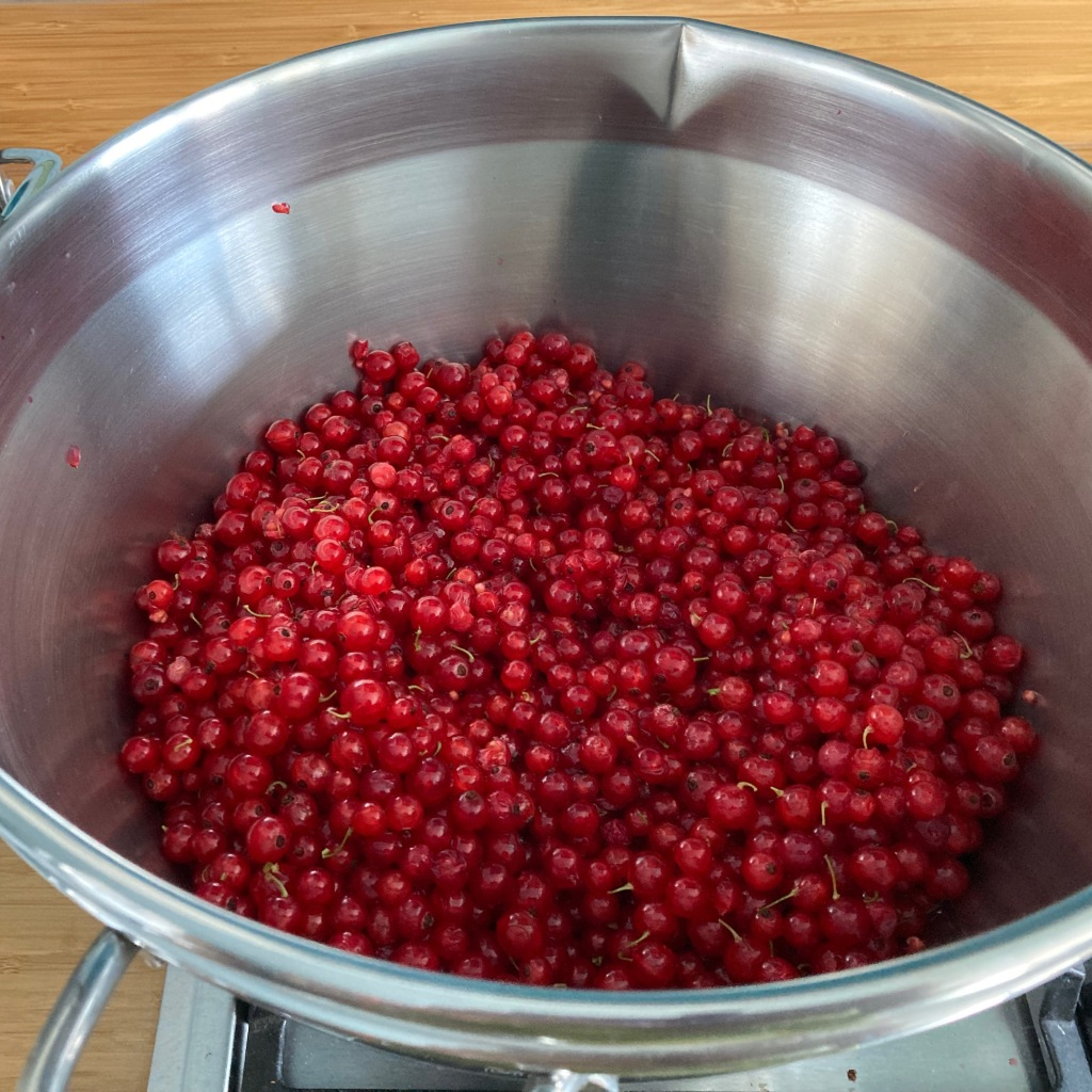 A jam pan half filled with very ripe redcurrants.