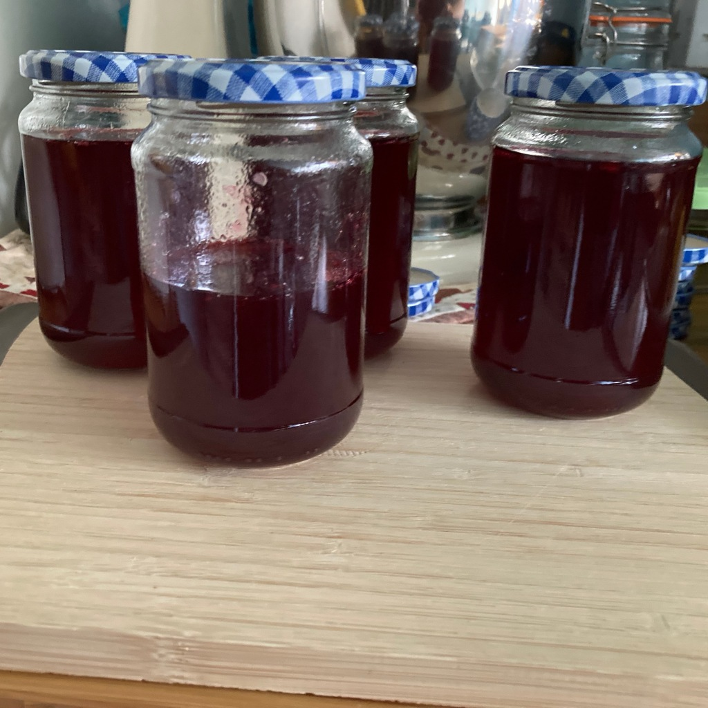 3 1/2 jars of redcurrant jelly cooling on the breadboard in front of the jam pan.