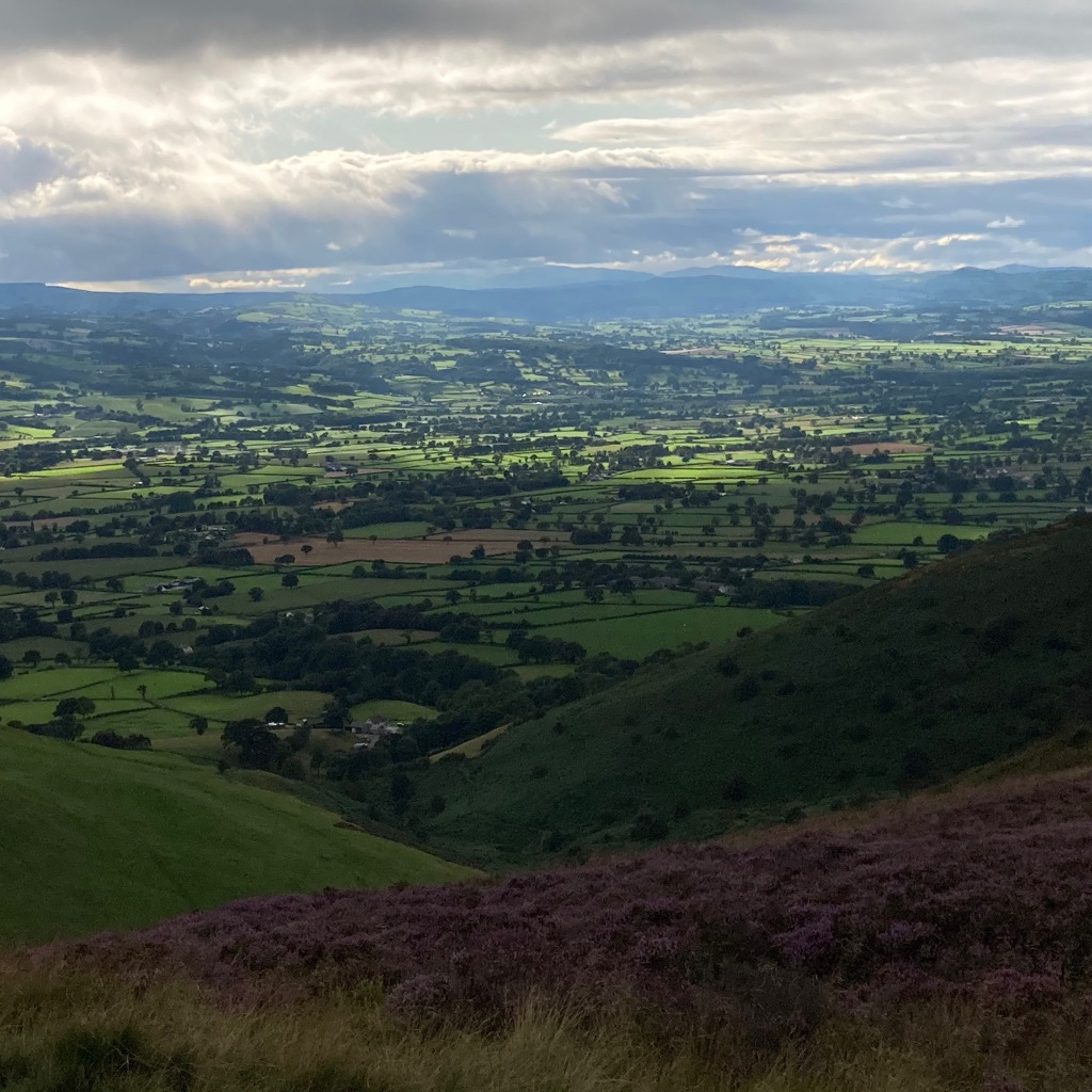 View over Denbighshire from Moel Famau. There is purple heather in the foreground near the path and the hills are dotted with trees. There is a dramatic break in the clouds in the distance allowing sunshine onto some of the fields. In the far distance, the mountains of Snowdonia can be seen.